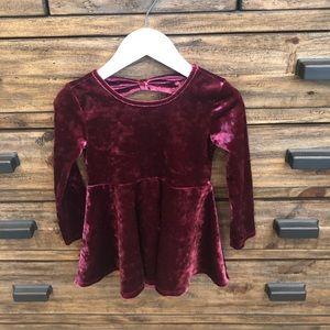 Children's Place Burgundy Velvet Dress In Size 2T